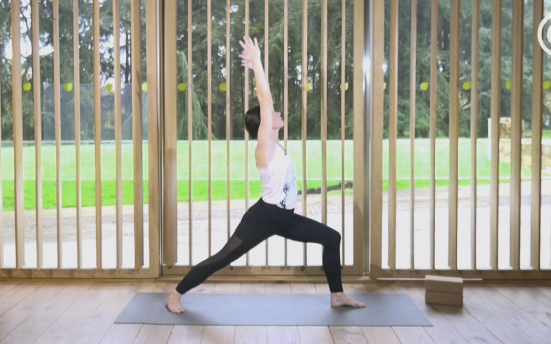 Hatha yoga flow dynamique #1